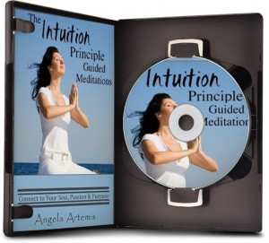The Intuition Principle Guided Meditations: Connect to Your Soul, Passion & Purpose